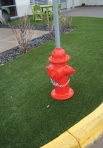 dog-park-hydrant-web