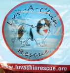 luvachinrescue.org